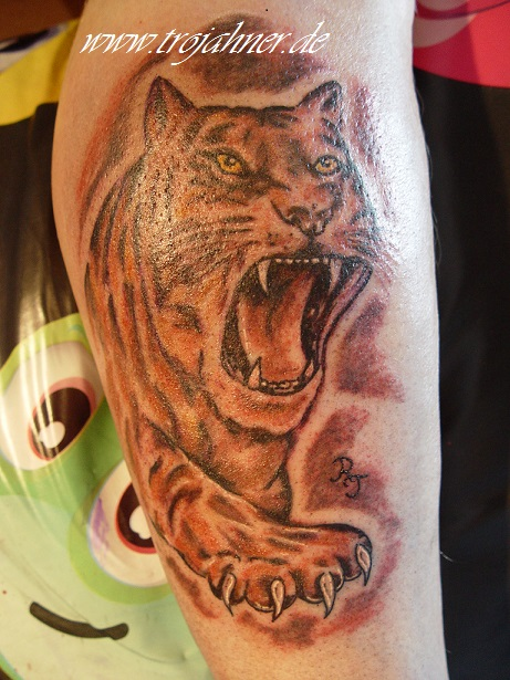 Bild Tiger Tattoo Dresden Tattoostudio