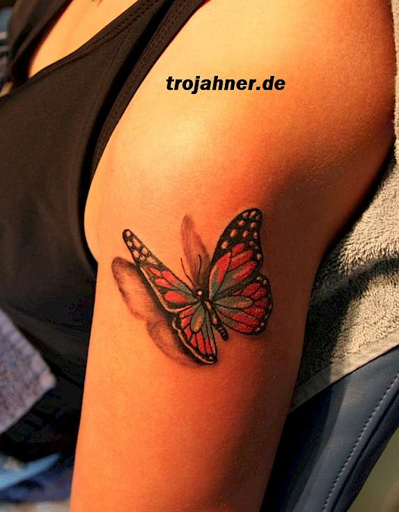 Bild Schmetterling 3D Tattoo